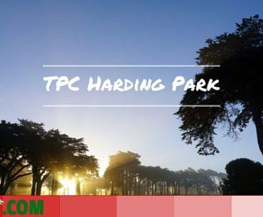 TPC-Harding-Park-1